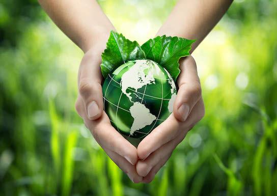 Curs online auditori de mediu - platforme elearning